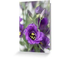 A purple dream... Greeting Card