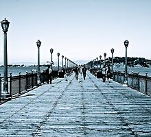 The Dock's of San Francisco by LaFramboise