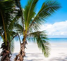 Beautiful tropical beach by Stanciuc