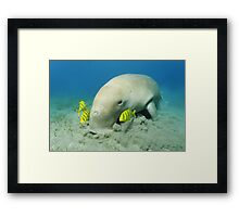 Vacuum Cleaner Framed Print