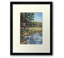 Lilies on the dam after rain Framed Print