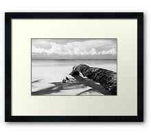 Fallen palm tree in black and white Framed Print