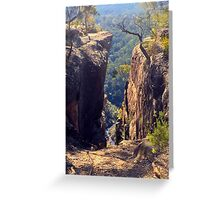 Tunnel View Lookout, Blue Mtns National Park, NSW Greeting Card
