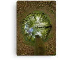 Butterfly Sculpture in Prehen Woods, Derry (Sky-in) Canvas Print