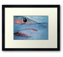 Mako Shark Framed Print