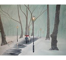Snowfall In The Park Photographic Print