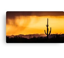 Silhouette before the storm  Canvas Print