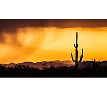 Silhouette before the storm  Photographic Print