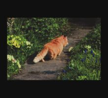 Ginger cat hunting on garden path Kids Clothes