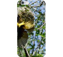 Asian Golden Weaver iPhone Case/Skin
