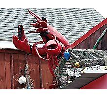 Lobster Topper Photographic Print
