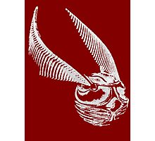 Golden Snitch Photographic Print