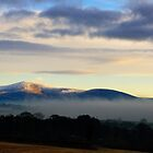Blackstairs Mountains, County Carlow, Ireland by Andrew Jones