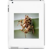 The Industry of Paper Wasps iPad Case/Skin