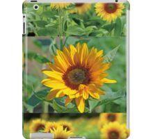 Sunflowers on a Field iPad Case/Skin