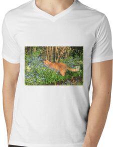 Ginger cat hunting in garden Mens V-Neck T-Shirt