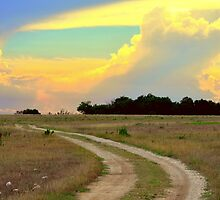 The Farm Road by Danny Key