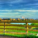 Pawleys Island lite by the Sun by TJ Baccari Photography