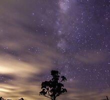 Milky silhouette by Kathleen  Barrington