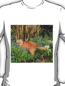 Ginger cat hunting in garden T-Shirt