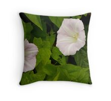 Sea Bindweed, Muckross Head, Donegal Throw Pillow