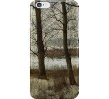 The Frozen Marsh iPhone Case/Skin