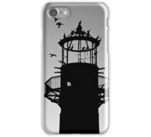 Cormorants Coming Home to Roost iPhone Case/Skin