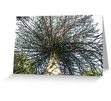 Under The Trees Greeting Card