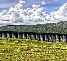 Ribblehead Viaduct by Tom Gomez