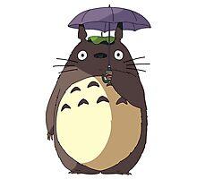 Totoro - My neighborn Totoro Photographic Print