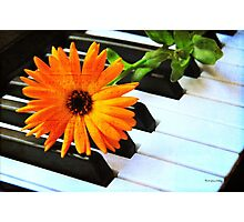 Happy Music Photographic Print