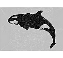 Stained Glass Geometric Orca Photographic Print