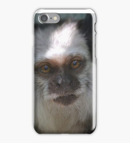 Marmoset iPhone Case/Skin