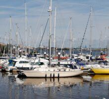 Cardiff Bay Boats Sticker