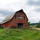 Cline Brothers Farm by joelmcafee