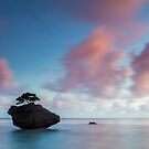 Christmas Island by Paul Pichugin