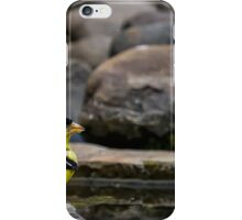 Male American Goldfinch iPhone Case/Skin