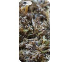 Nature-inspired dried moss iPhone Case/Skin