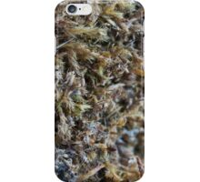 Nature-inspired dried moss_1 iPhone Case/Skin