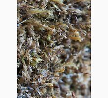 Nature-inspired dried moss_1 Unisex T-Shirt