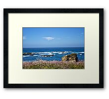 rocky shoreline - northern CA Framed Print