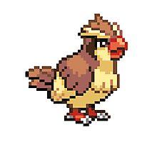 Old School Pokemon 8-Bit Pidgey Fun! Gotta Catch 'Em All.  Photographic Print