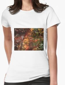 Sunlight on cavern walls Womens Fitted T-Shirt
