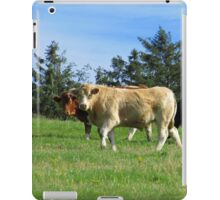 Hey! What you looking at? iPad Case/Skin