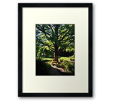 park, spring Framed Print