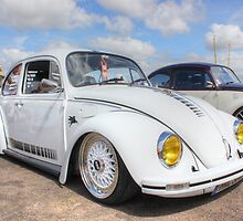 White Beetle by Vicki Spindler (VHS Photography)