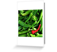 Red or Green? Greeting Card