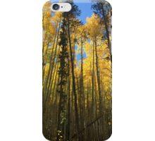 Rainbow Lake iPhone Case/Skin