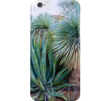 Desert Study 15  iPhone Case/Skin