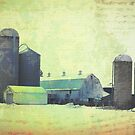 Midwest Farm by susan stone